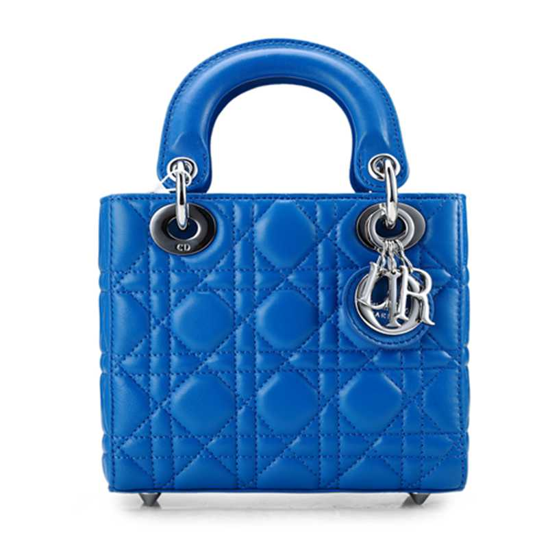 2014 Dior Original leather 44552 Blue silver chain
